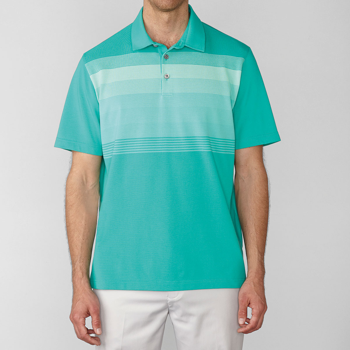 Ashworth Mens Performance Interlock Multi-Stripe Galapagos Polo